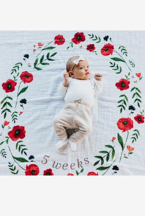 Fondo fotos bebé y tarjetas edad