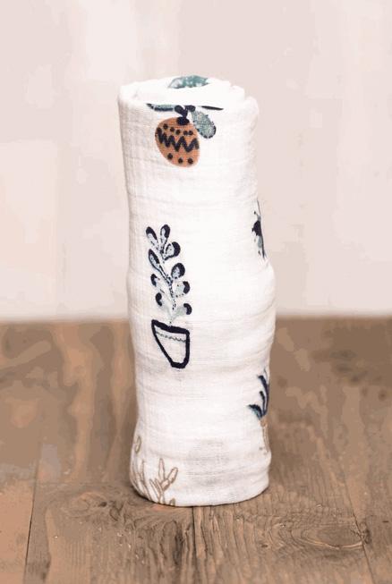 Muselina algodón Suculentas 120×120